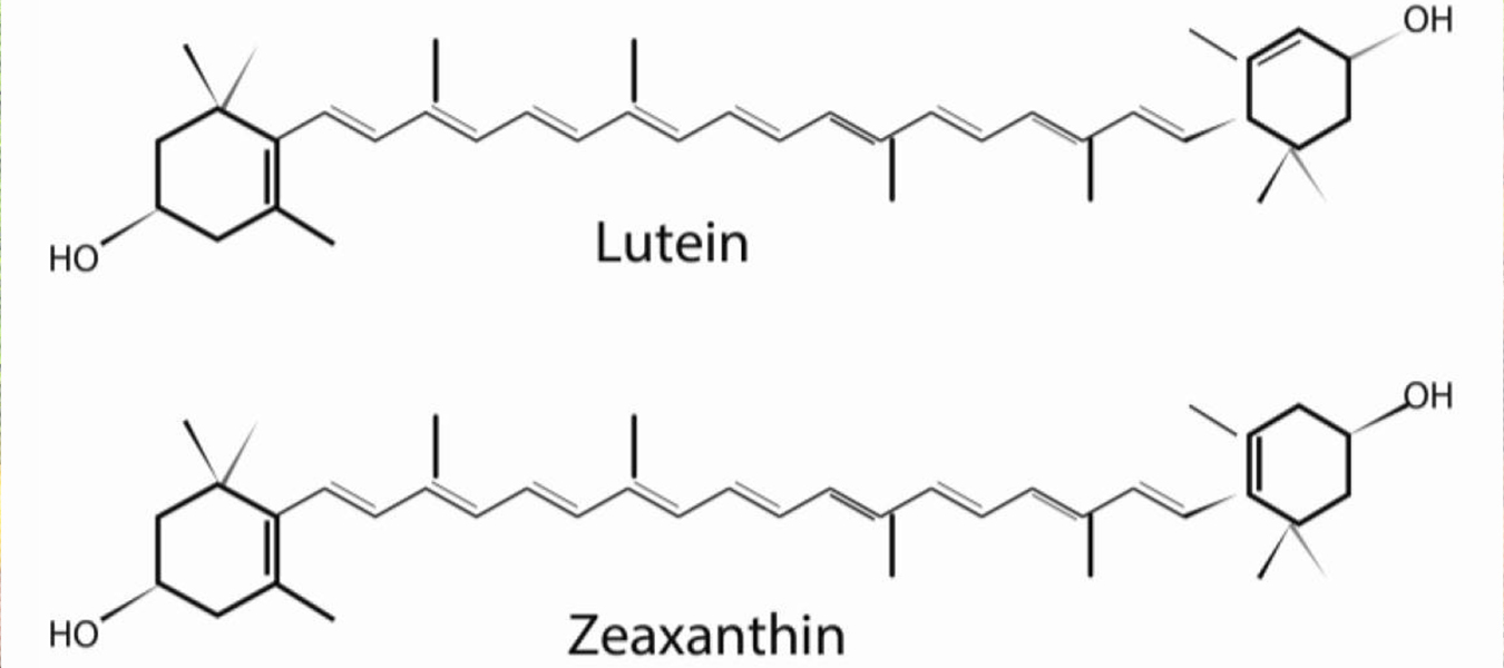 Lutein and Zeaxanthin benefit your vision
