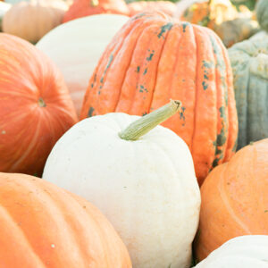 featured image for pumpkin health benefits
